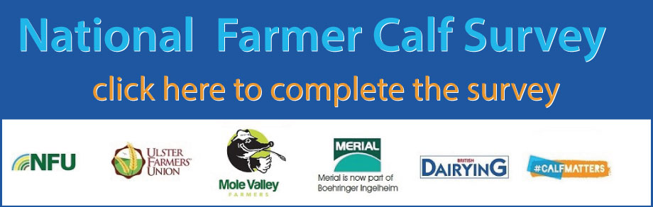 Banner providing link to the National Farmer Calf Survey, for which British Dairying is one of the sponsors